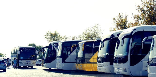 What Is A Charter Bus Service